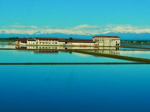 die Gebäude der Reisbauern wirken wir Wasserschlösser