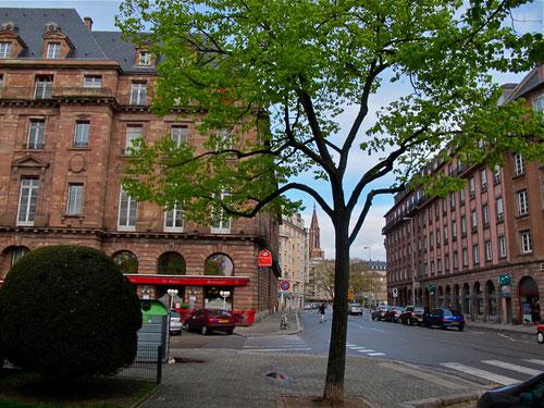 Straßburg - wichtigste Stadt des Elsass, an der Frenze zu Deutschland