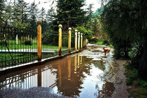 in Sotschi hatte es in den Tagen davor viel geregnet