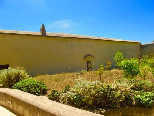 der verwilderte Klostengarten von Certosa