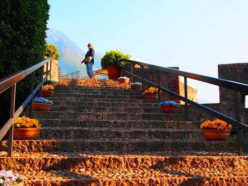Freitreppe zu einer Terrasse, die gern zu Hochzeiten genutzt wird