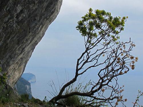 auf den steinigen Felsenvorsprüngen waren die Ausblicke aufregend und schön