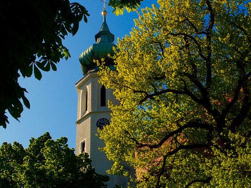 die barocke Pfarrkirche in Grinzing