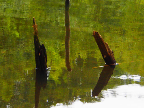 ruhiges Wasser ist immer voller Spannung