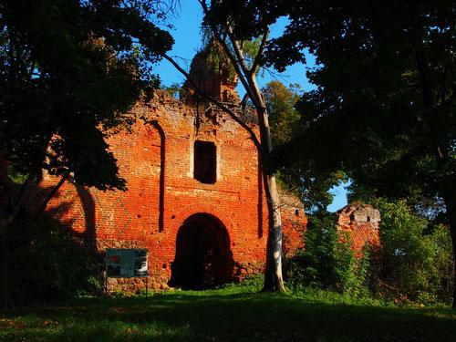 Front zur Hofseite - die Burg-Ruine verfällt ungeschützt