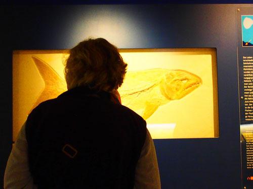 einen Besuch dieses Museums solltest Du baldmöglichst einplanen