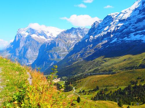 Der Weg von Grindelwald hinauf zur kleinen Scheidegg