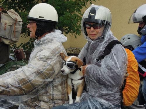 Mopedfans sind natürlich wettermässig besser ausgerüstet!