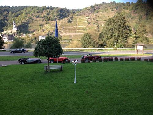 Schöner Weinberg, grünes Gras, leicht bräunlich-blaue Mosel und.................fabelhafte Panther!