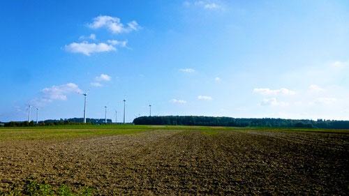Extra für unsere Niederländer:  Windmühlen überall!