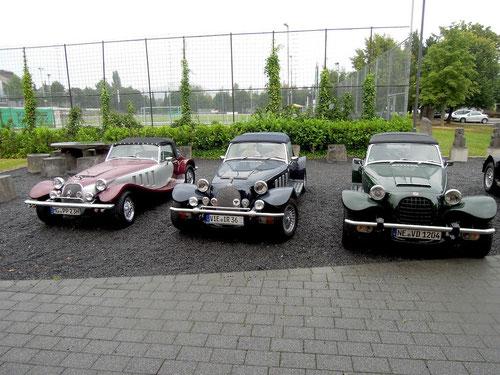 3 Katzen vom Niederrhein!