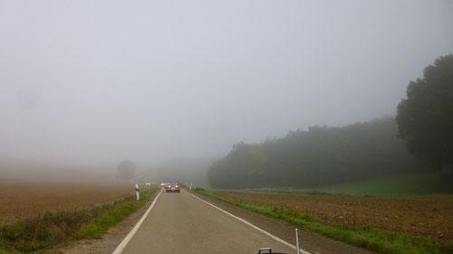 """Über meinem Lieblingsberg"""" Müdener Berg"""" durch die Weinberge, in Richtung Cochem!"""