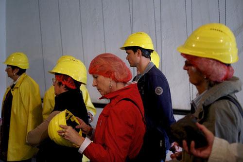 ob da bereits Untermieter im Helm sind?