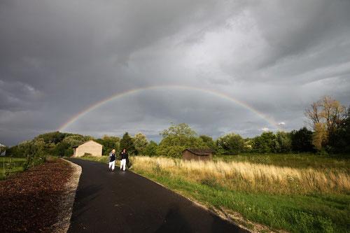 kurz vor Bissersheim......Regenbogen