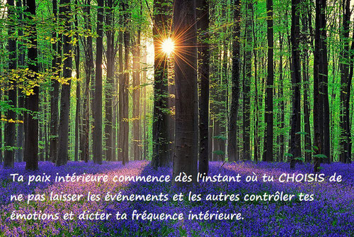 soin energetique, guerison, massotherapie, reiki, traitement energetique