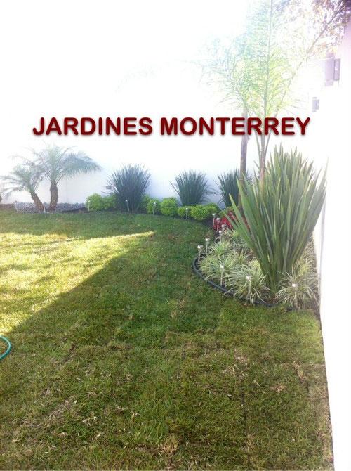Dise o y construccion de jardines jardines monterrey for Piedras para jardin en monterrey