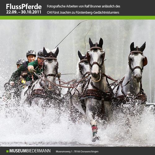 "Ausstellung ""Flusspferde"""