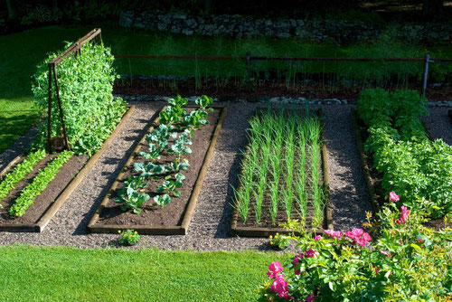 The Raised Bed Vegetable Garden at Distant Hill Gardens.