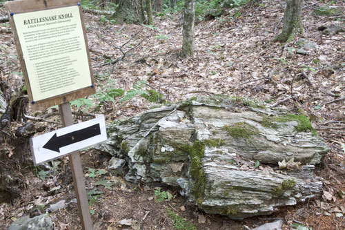 Site #2 on the Distant Hill Geology Trail is an example of the calcium-rich rock that makes up most of Rattlesnake Knoll.