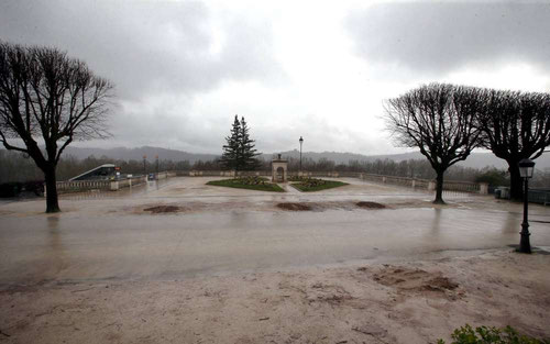 """Les tilleuls massacrés de la Place Royale pour """"dégager la vue"""". Photo : @ La République des Pyrénées"""