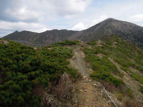 馬の背から見たアポイ岳山頂(右のピーク)と吉田岳(左のピーク)、手前の稜線にヒメチャマダラセセリが飛んでいます