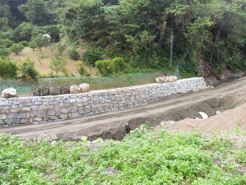 大宜味村にあるリュウキュウウラボシシジミのポイント 2012.09.23(画質がざらついているのは、雨のせいですよ)