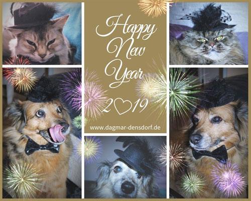 Happy New Year Hunde und Katzen mit Silvesterhut und Fliege