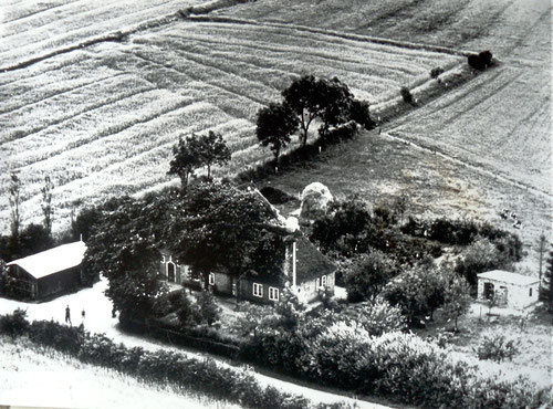 Die Luftaufnahme ist um 1952 entstanden (vorne stehen unser Knecht und ich). Links ist der Holzschuppen für Brennstoffe (Torf und Buschholz), rechts der neu errichtete Hühnerstall und hinten ein Heudiemen.