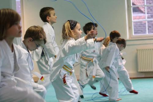 Karate Team Tübingen