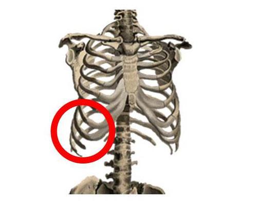 肋骨 左 の 痛い 脇腹 下