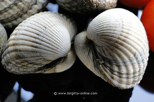 Herzmuscheln, Berberechos
