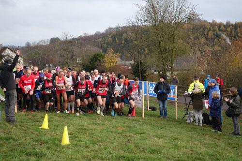 Ein großes Teilnehmerfeld beim Start der Langstrecke