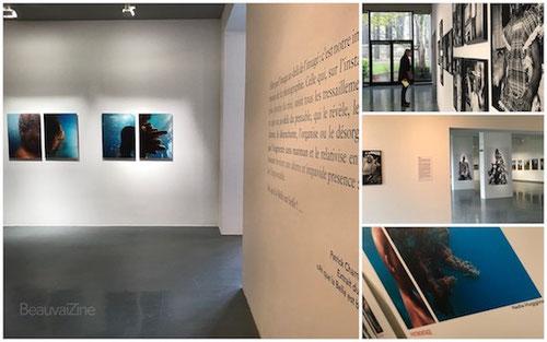 photaumnales 2017, quadrilatère beauvais, musée, photo expo, beauvaizine