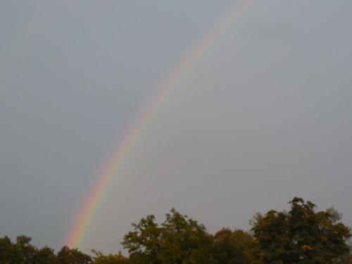 Noachs Regenbogen