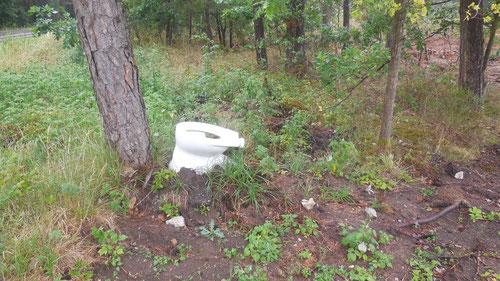 Toilette im Wald