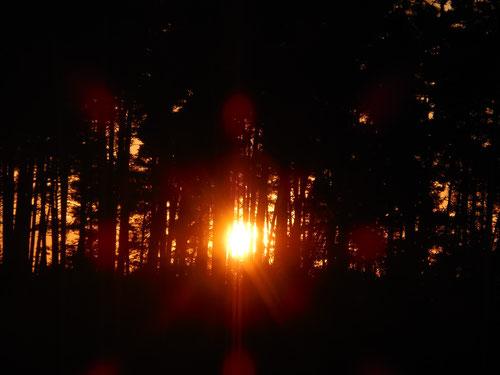 Sonnenuntergang in Spalt