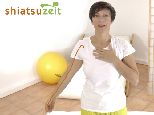 Shiatsu Praktikerin Katharina Grotte zeigt den Lungen Meridian Verlauf am Arm