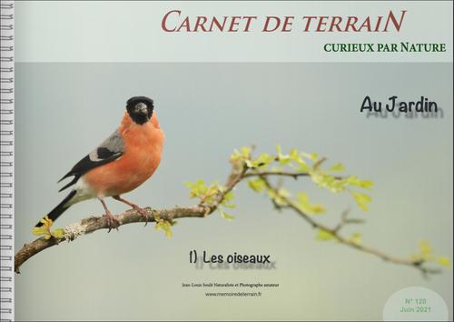 oiseaux jardin photographie Biodiversité protection environnement