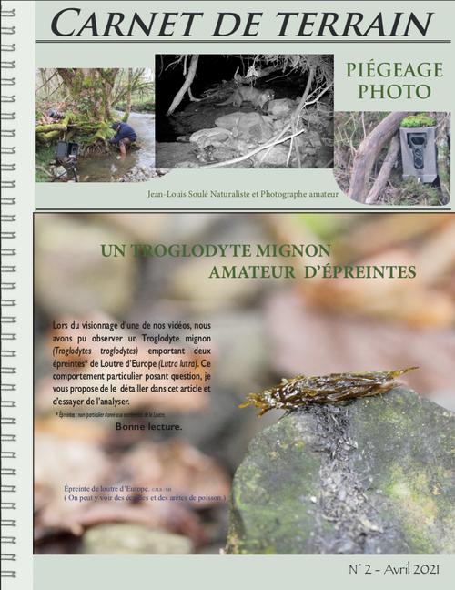 troglodyte mignon, loutre d'Europe, épreinte, rivière, piège photo, vidéo, biodiversité, mammifère, Pyrénées Atlantiques, Bearn, faune sauvage,