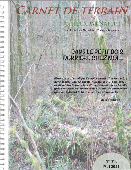 carnet de terrain, biodiversité, chouette hulotte, rapace nocturne , protection, forêt, oiseau