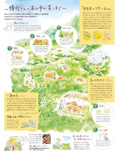 ▲熊本食べる通信 図解イラスト