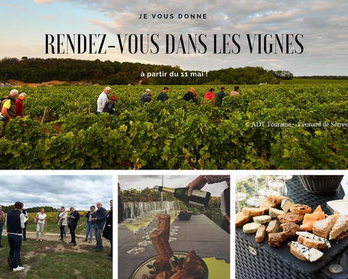 visite-vignoble-cave-troglo-degustation-vin-vallee-Loire-Touraine-Vouvray-Rendez-Vous-dans-les-Vignes