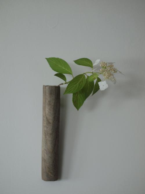 甘茶の花を掛け花入れに入れてみる。掛け花入/富山孝一