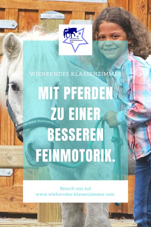 Stift im Griff! DAS Feinmotoriktraining mit Pferd - ein Konzept von Wieherndes Klassenzimmer - mit KKP zum Lernerfolg!