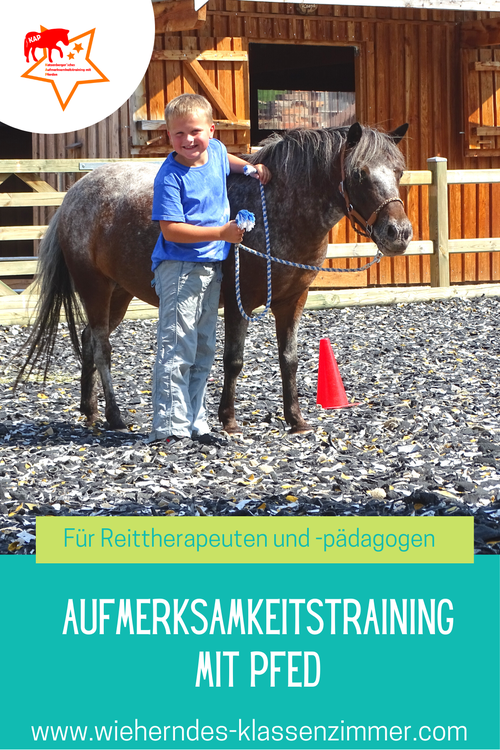 Mit Pferden zu mehr Ruhe und Aufmerksamkeit: DAS Aufmerksamkeitstraining mit Pferd.