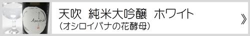 当店で唯一のオシロイバナ花酵母の日本酒