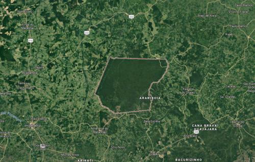 El territorio indígena amazónico de Arariboia es una isla verde rodeada de deforestación. © Survival