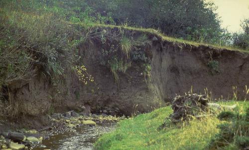 Rio Itambi, Ecuador, mit ausgeprägtem Erosionsufer