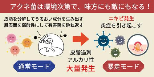 アクネ菌は環境次第で、味方にも敵にもなる!