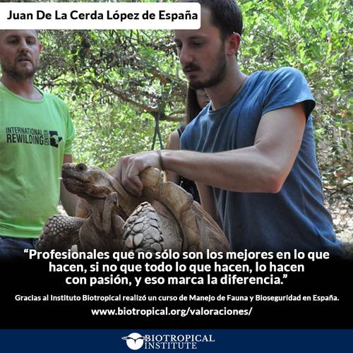 Atención clínica a un Puma en el curso realizado en Argentina (El Chaco). Abril 2018